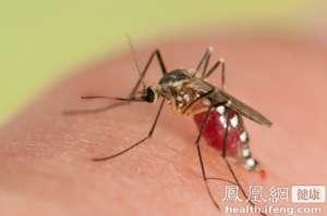 北京市卫计委:寨卡病毒在北京市广泛传播风险小