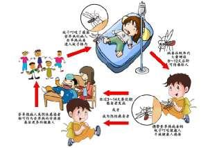广东上周新增75例登革热病例